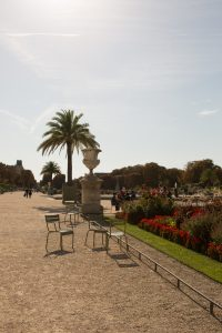 Chairs at Luxembourg gardens.